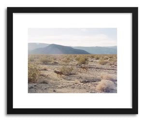 hide - Art print Valley Coyotes by artist Kevin Russ on fine art paper