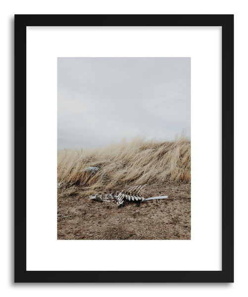 Fine art print Winded Skeleton by artist Kevin Russ