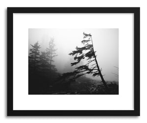 hide - Art print Foggy Forest No.4 by artist Kristine Weilert in natural wood frame