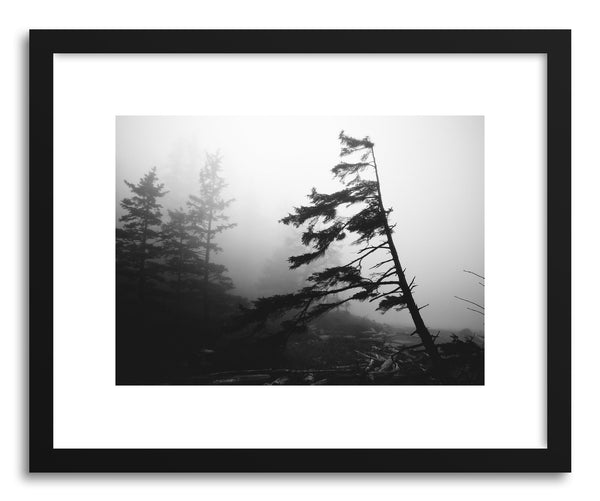 Fine art print Foggy Forest No.4 by artist Kristine Weilert