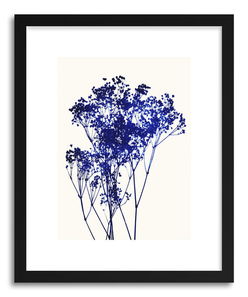 Fine art print Babys-Breath No.1 by artist Garima Dhawan