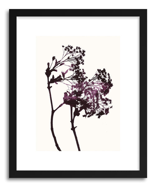 Fine art print Maple No.1 by artist Garima Dhawan