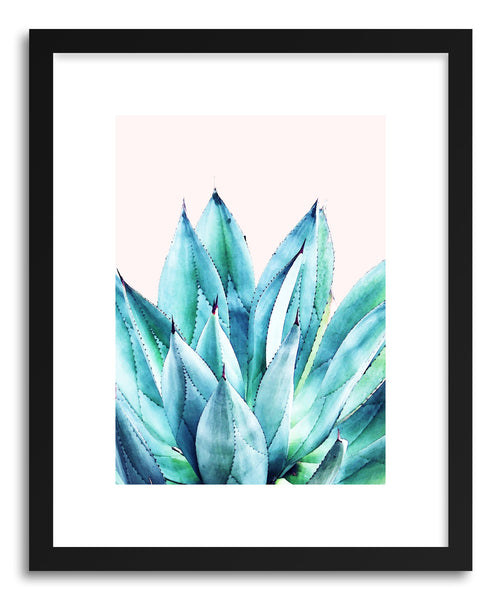 Fine art print Agave Watercolor by artist Uma Gokhale