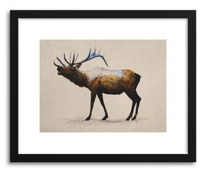 Fine art print Rocky Mountain Elk by artist David Iwane