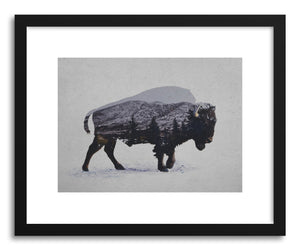hide - Art print The American Bison by artist David Iwane on fine art paper