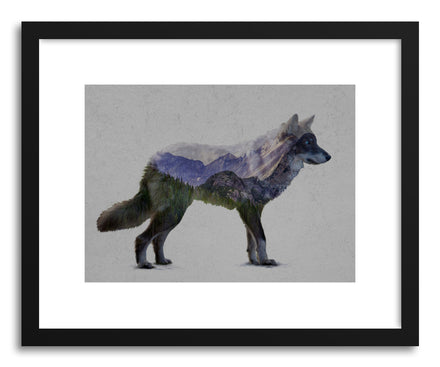 Fine art print The Rocky Mountain Gray Wolf Print by artist David Iwane