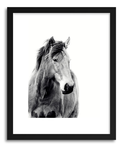 Art print Willow by artist By The Horns