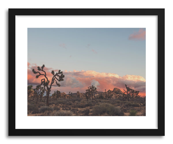 Fine art print Joshua Tree Sunset No.2 by artist Myan Soffia