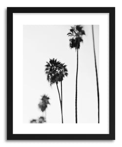 Fine art print Blurry Palms I by artist Myan Soffia