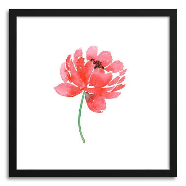 Fine art print Spring Fling Peony by artist Peggy Dean