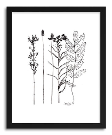 Fine art print Botanicals Timothy Lake by artist Peggy Dean
