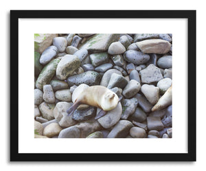 Fine art print Seal Rocks by artist Wes Lewis