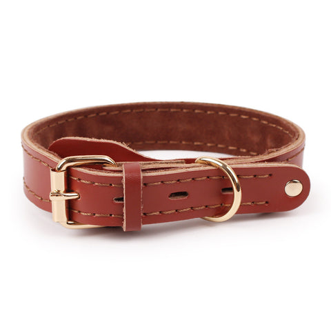 Rustic Leather Dog Collar