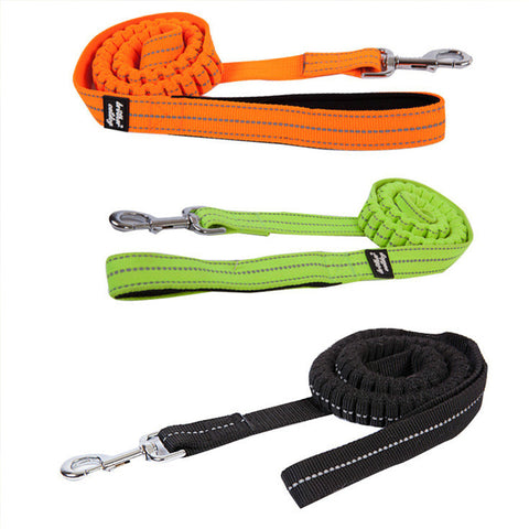 Reflective Running Leash