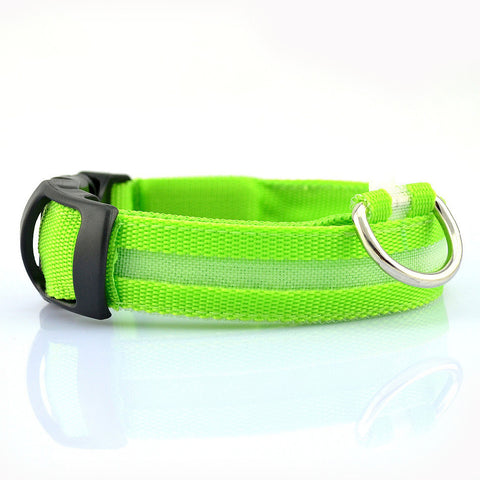 Nylon LED Collar - 5 Colors