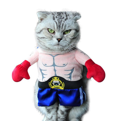 Cat Wrestler Costume