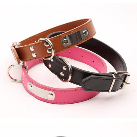 Trendy Buckle Collar