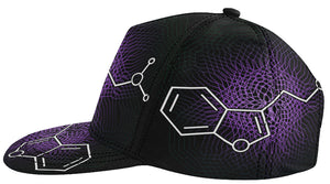 *Featured Gear* 'DMT Molecule' Snapback hat by Nick Zervos