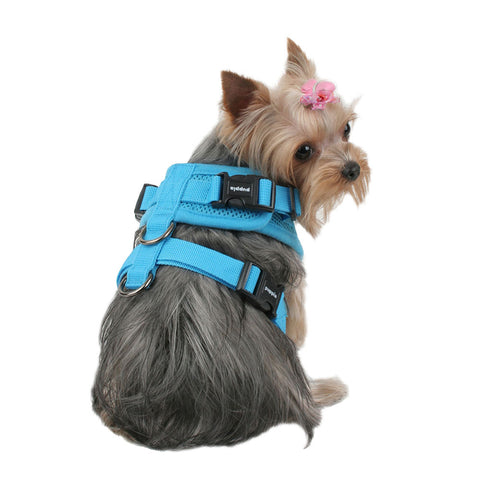 Puppia Ritefit Harnesses - Amazing Pet