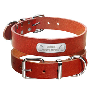Personalized Genuine Leather Dog Collar - Amazing Pet