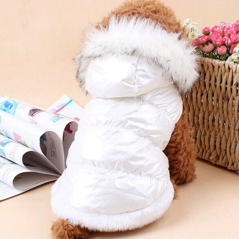 Winter Jacket for Pets