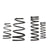 COBB Ford Focus ST 2013 Sport Springs