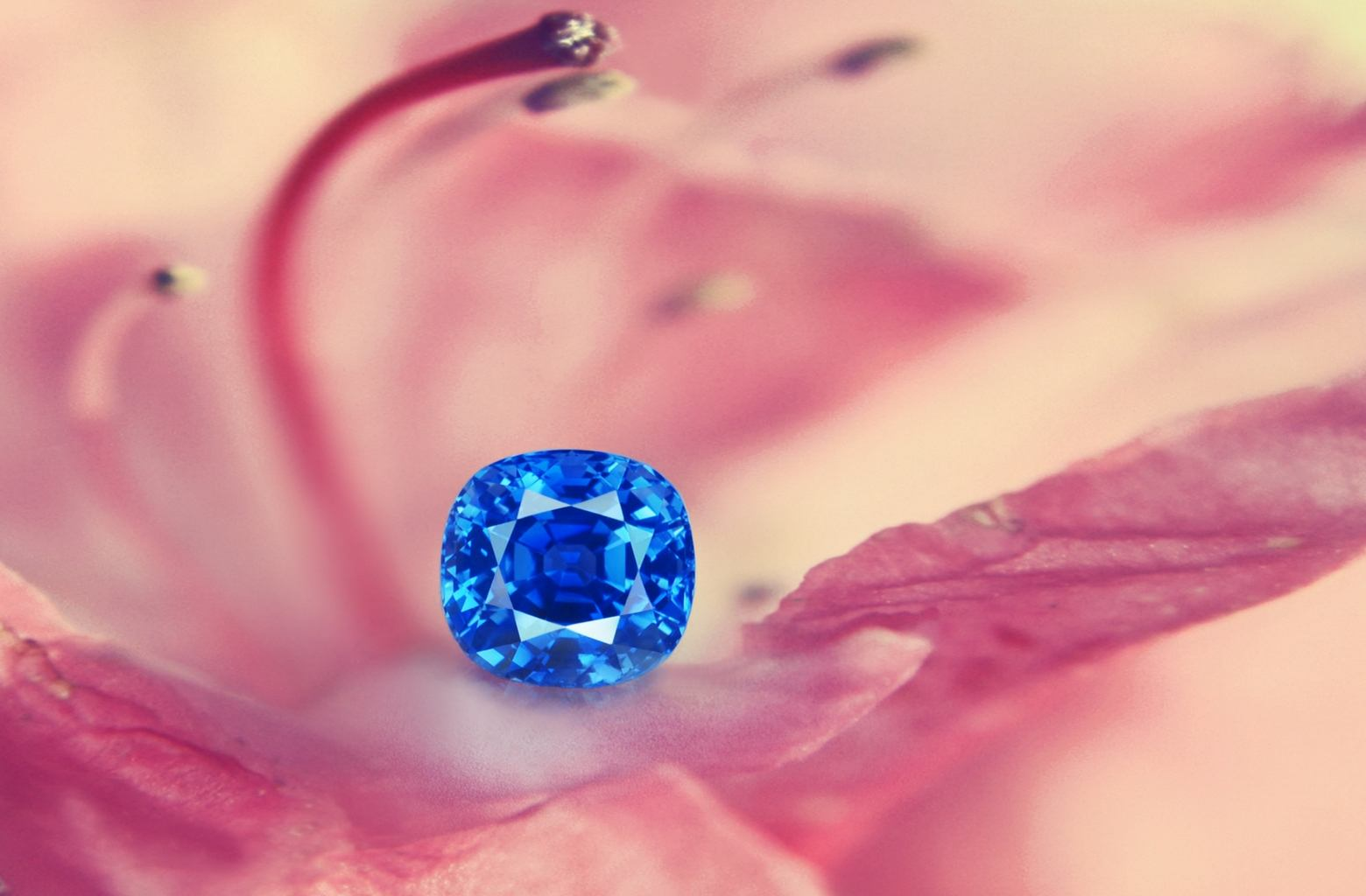 ceylon by diamond sapphire ring renejewelry blue cornflower carat pin