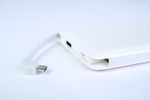 Power Bank (10000mAh) - Charlotte Riding Horse 皮紋行動電源(10000mAh) - 莎樂騎馬樂