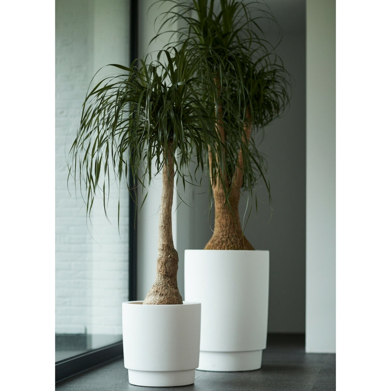 mon exteriors luxury planter in white