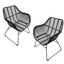 Wates Dining Chair (set of 2)