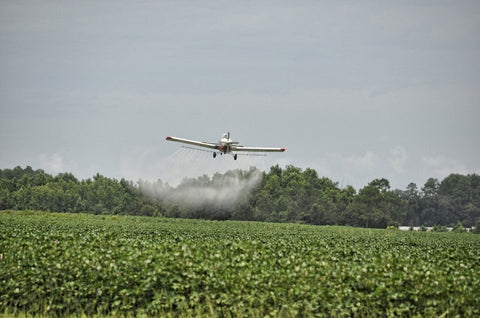 A crop-duster airplane spraying cotton with chemical insecticide