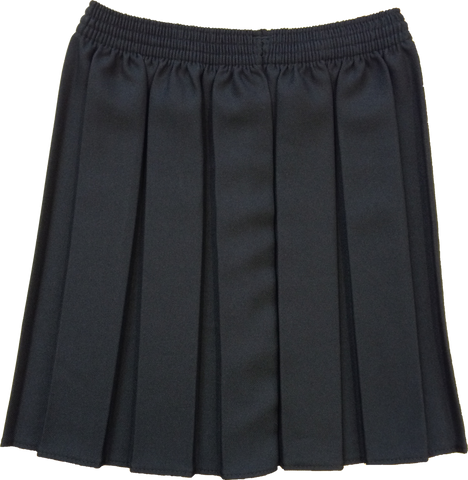 Black Box Pleated Skirt
