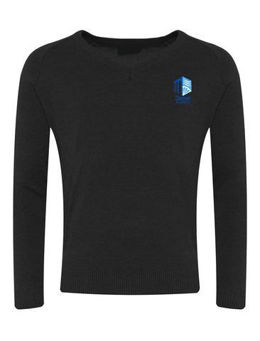 Dene Academy Black V-Neck Jumper