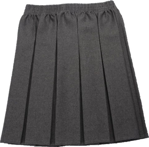 Grey Box Pleated Skirt