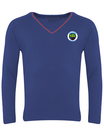 Holley Park Academy Royal Blue with Red Stripe V-Neck Jumper