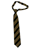 St Aidan's Catholic Academy Purple Stripe Velcro Tie
