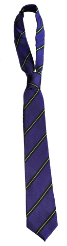 The Venerable Bede Academy Tie
