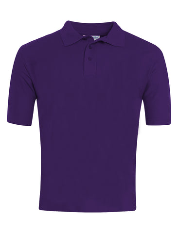 Lord Lawson Of Beamish Academy 6th Form Purple Polo