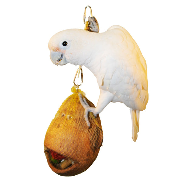Coco Monkey Coconut Shell Bird Toy