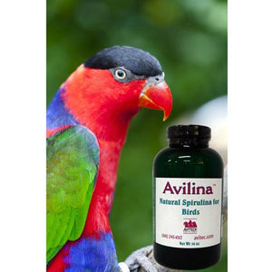 Avilina High Potency Multivitamin Supplement 4oz