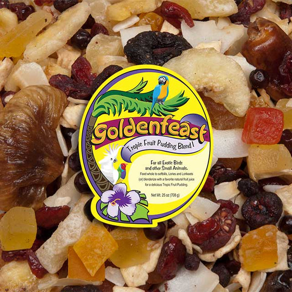 Goldenfeast Tropical Fruit Pudding Blend, 11 lbs
