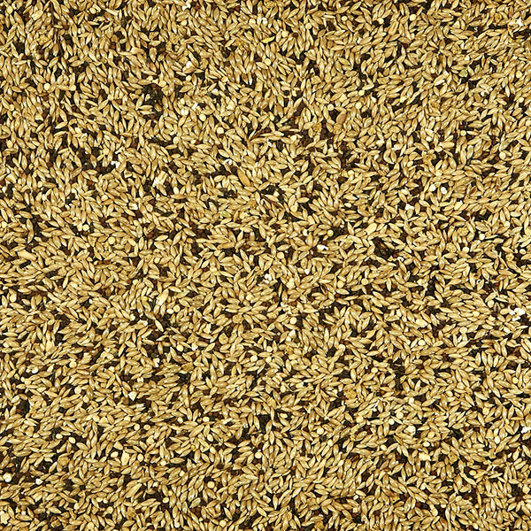 Kaytee Supreme Canary Food, 25lb