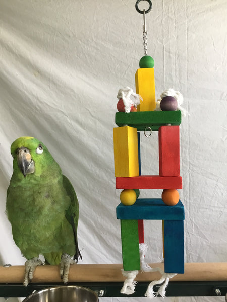 Birds LOVE Blocks of Fun