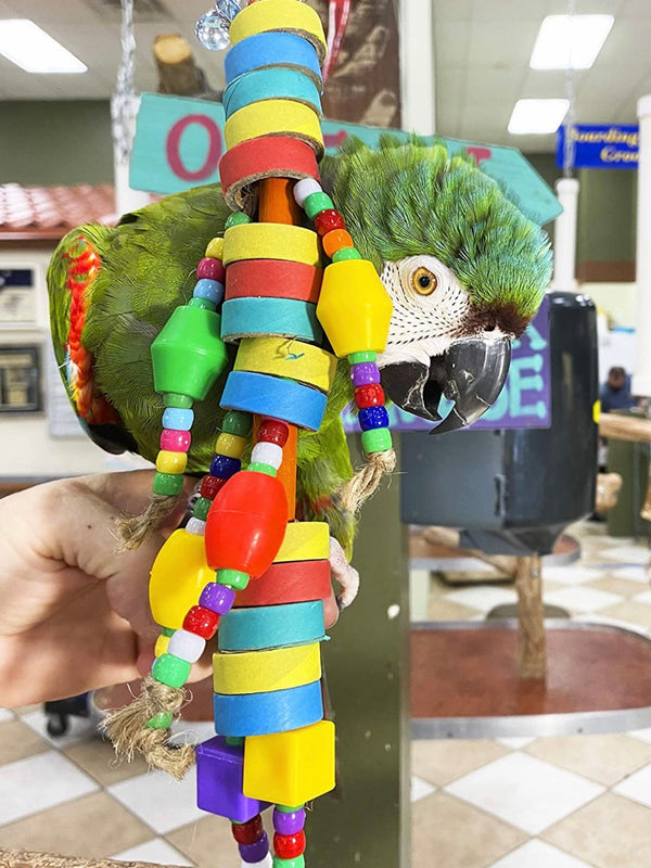 Bagel Doll Parrot Toy