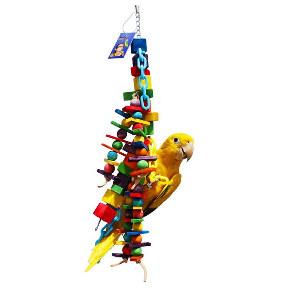 Birds LOVE Rainbow Necklacefor Medium Size Birds