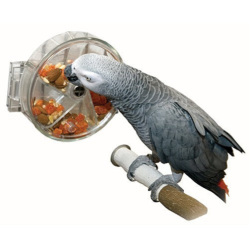Foraging Wheel Toy