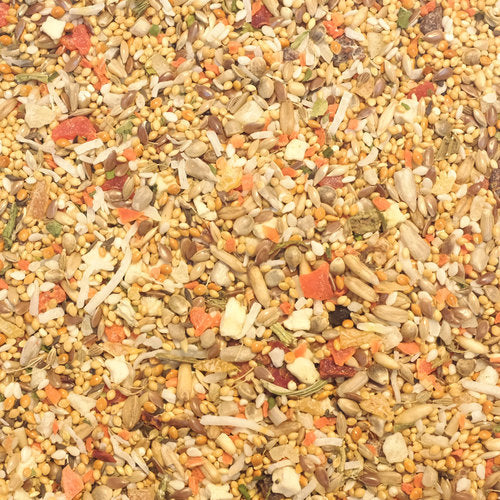 Higgins Sunburst Fruits & Veggies Gourmet Treats for Small Birds, 1 lb