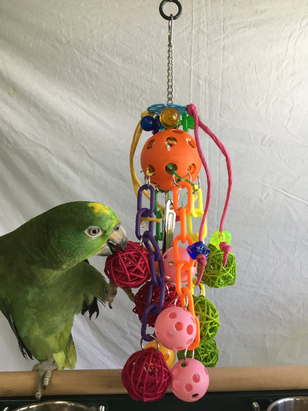 Birds LOVE Solar Fun