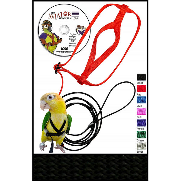 The AVIATOR Pet Bird Harness and Leash, Black, X-Small