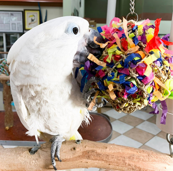 Birds LOVE Super Shredding Large Ball Parrot Toy, Foraging Toy w Hidden Treasures
